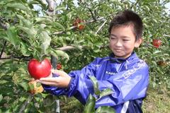 収穫体験を楽しむ子ども