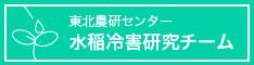 東北農研センター 水稲冷害研究チーム