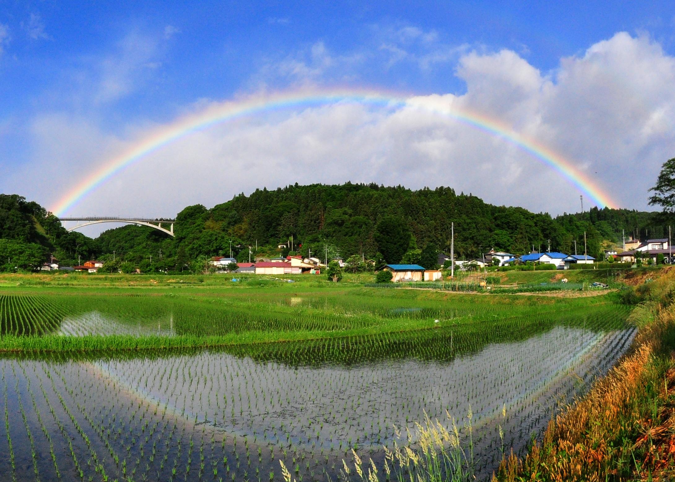 夢乃橋に架かる虹の橋